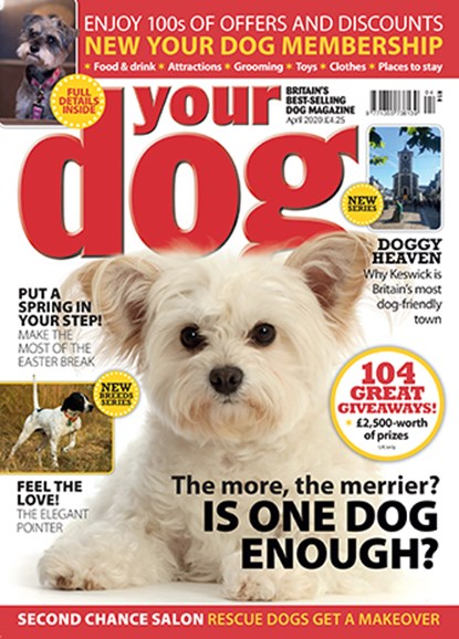Your Dog Cover - 4/1/2020