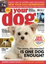 Your Dog | 4/2020 Cover