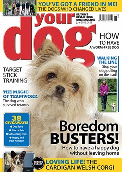 Your Dog Cover - 6/1/2020