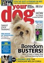 Your Dog | 6/2020 Cover