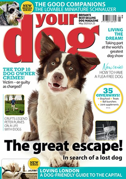 Your Dog Cover - 5/1/2020