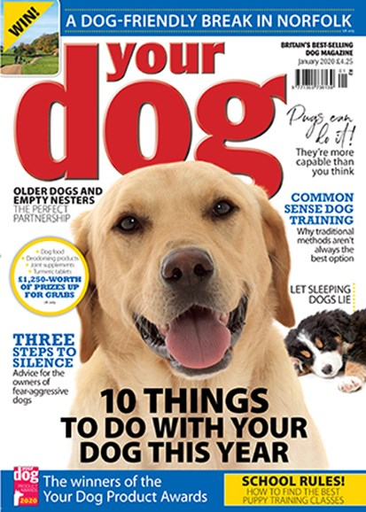 Your Dog Cover - 1/1/2020
