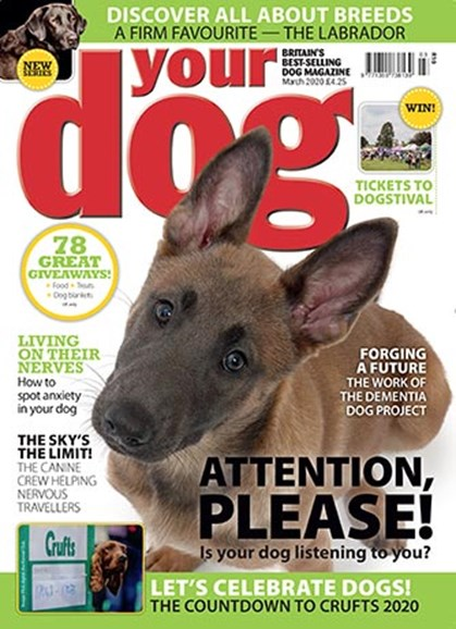 Your Dog Cover - 3/1/2020