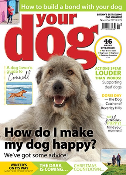 Your Dog Cover - 11/1/2019
