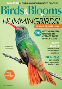 Birds & Blooms Magazine | 6/2020 Cover