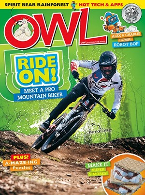 OWL Magazine   6/2020 Cover