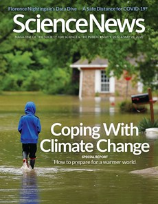 Science News | 5/2020 Cover