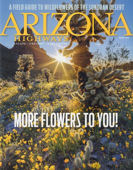 Arizona Highways Cover - 3/1/2020