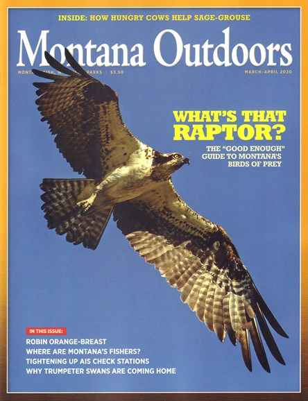 Montana Outdoors Cover - 3/1/2020