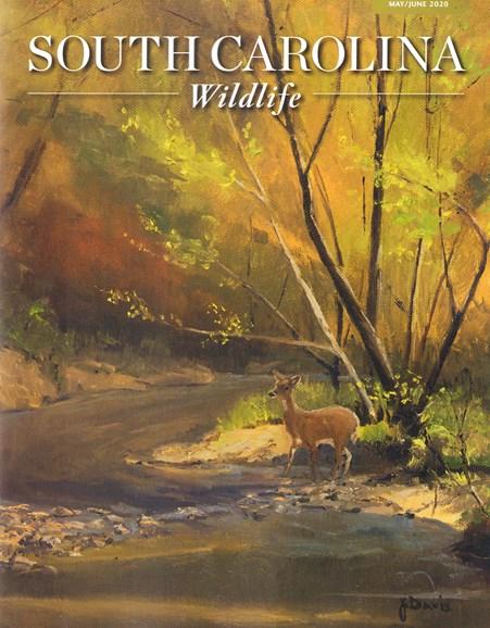 South Carolina Wildlife Cover - 5/1/2020