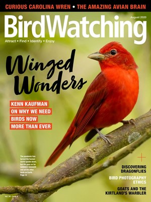 Bird Watching Magazine | 8/2020 Cover