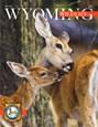 Wyoming Wildlife Magazine | 5/2020 Cover