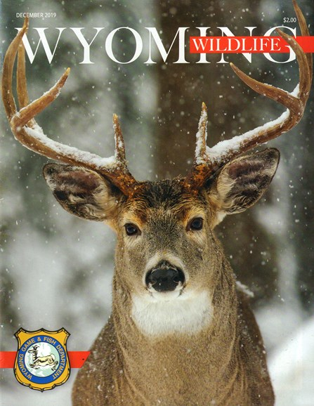 Wyoming Wildlife Cover - 12/1/2019
