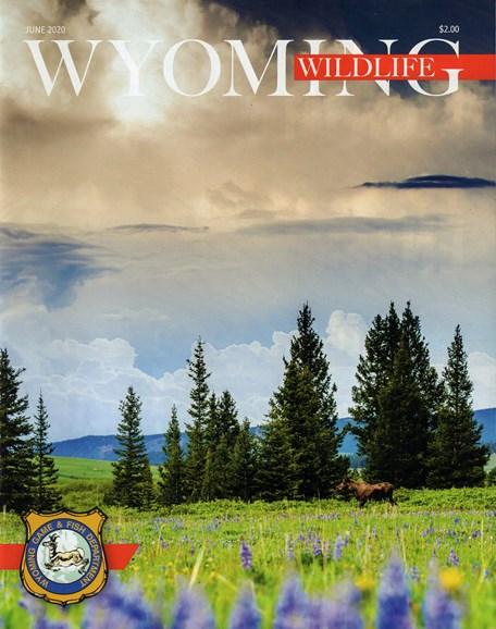 Wyoming Wildlife Cover - 6/1/2020