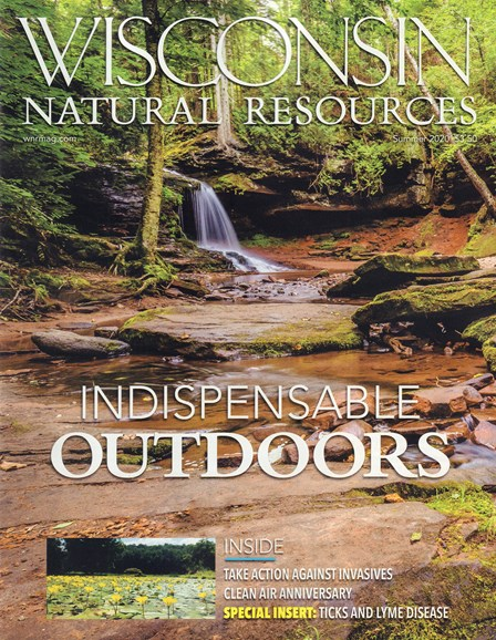 Wisconsin Natural Resources Cover - 6/1/2020