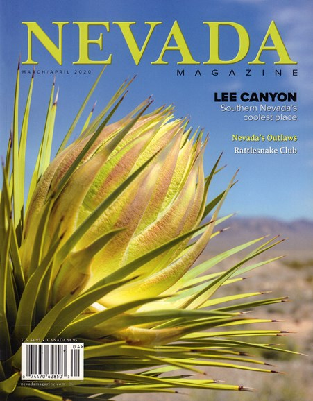 Nevada Magazine Cover - 3/1/2020