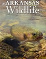 Arkansas Wildlife Magazine | 3/2020 Cover