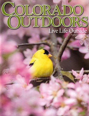Colorado Outdoors Magazine | 5/2020 Cover