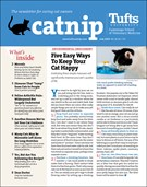 Catnip Newsletter 7/1/2020