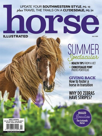 Horse Illustrated Cover - 7/1/2020