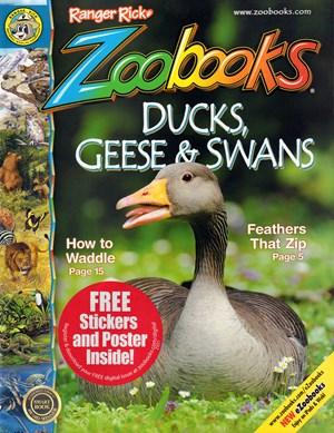 Zoobooks Magazine | 7/2020 Cover