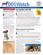Dogwatch Newsletter | 4/2020 Cover