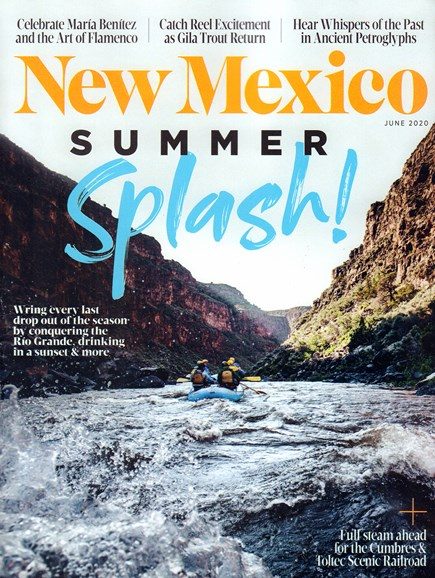New Mexico Cover - 6/1/2020