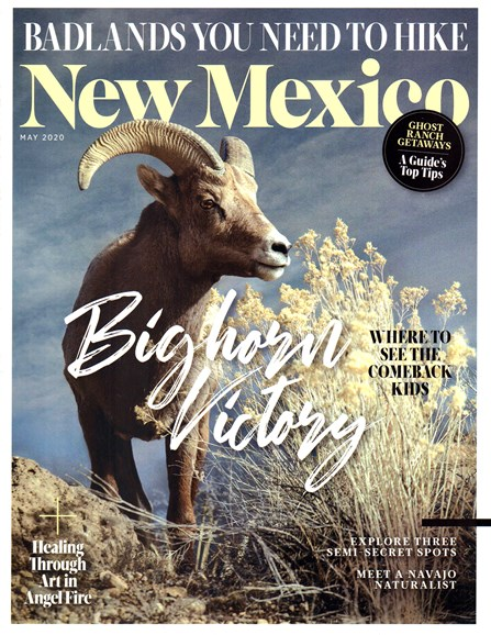 New Mexico Cover - 5/1/2020