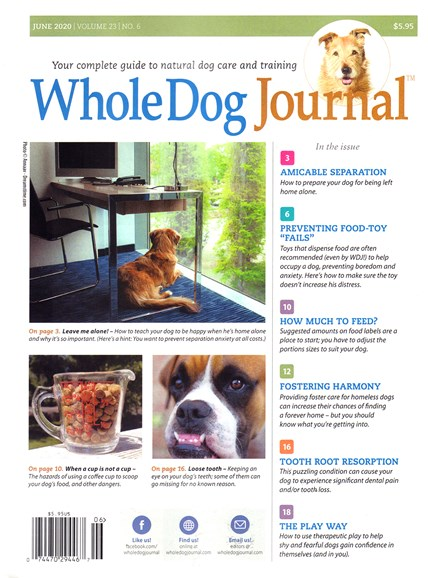 Whole Dog Journal Cover - 6/1/2020