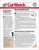 Catwatch | 7/2020 Cover