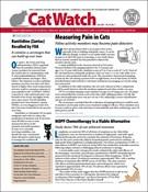 Catwatch Magazine 7/1/2020