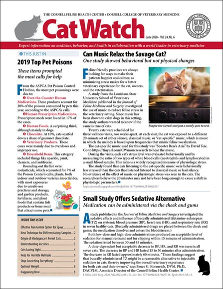 Catwatch Cover - 6/1/2020