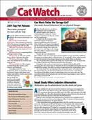 Catwatch Magazine 6/1/2020