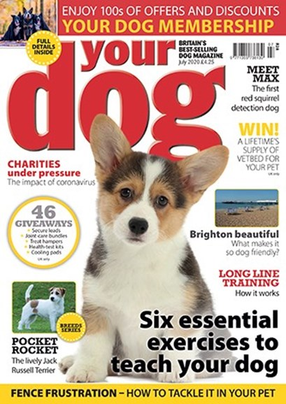 Your Dog Cover - 7/1/2020