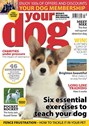 Your Dog | 7/2020 Cover