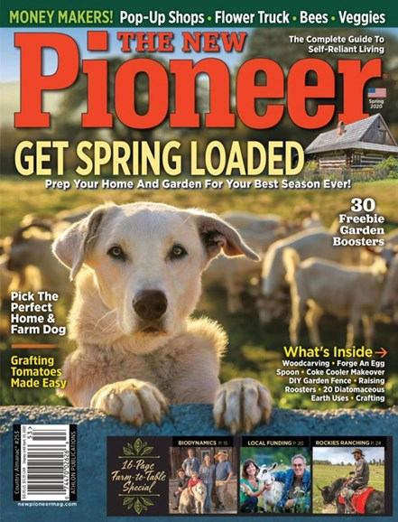 The New Pioneer Cover - 4/1/2020