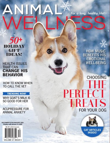 Animal Wellness Cover - 12/1/2019