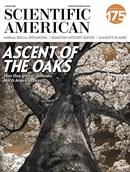 Scientific American | 8/2020 Cover