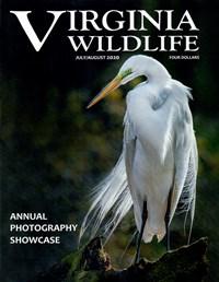 Virginia Wildlife Magazine   7/2020 Cover
