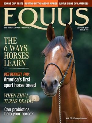 Equus Magazine | 9/2020 Cover