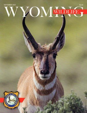 Wyoming Wildlife Magazine | 9/2020 Cover