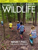National Wildlife | 10/2020 Cover