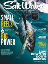 Salt Water Sportsman | 10/2020 Cover