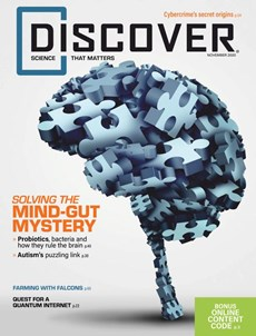 Discover | 11/2020 Cover